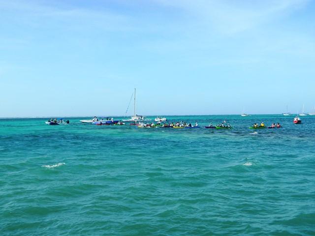 annual kayak race belize