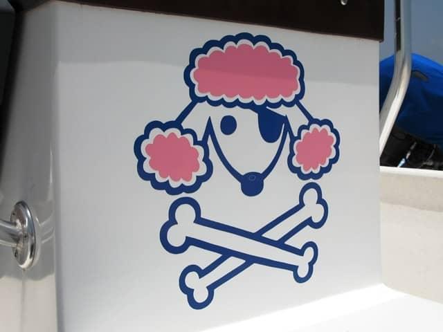 poodle pirate belize