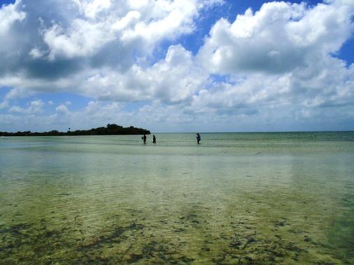 ambergris caye beaches