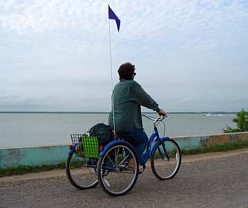 schwinn 3 wheel cargo bike