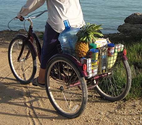 schwinn cargo bike