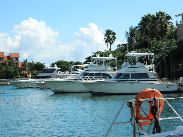 puerto aventuras marina on the riviera maya