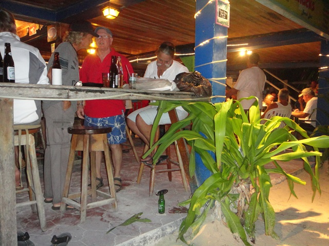 crazy canucks belize beach bar