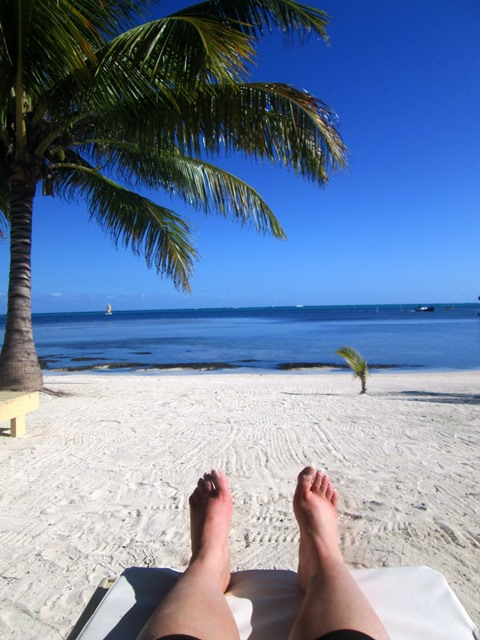 belize beach picture by amy fordyce