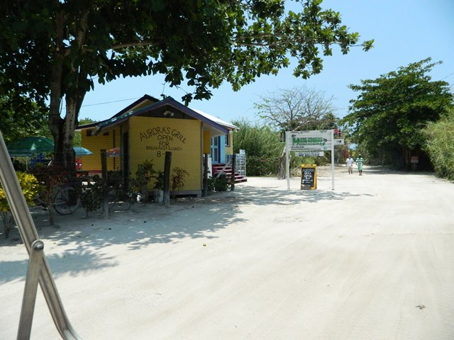 north ambergris caye grocery store