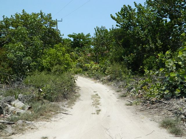 roads north ambergris caye