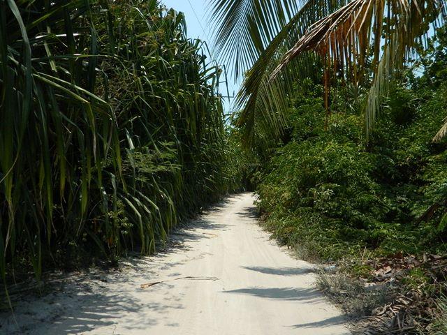 belize roads north ambergris caye